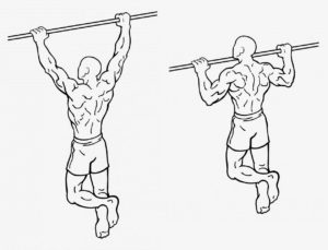 movements-pull-ups