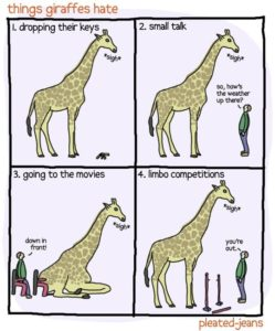 giraffe-problems